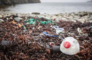 """""""塑料海鲜""""曝光:你吃的每一口,可能都是垃圾"""