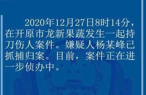 辽宁开原发生持刀杀人案:致7死7伤 嫌疑人被抓获