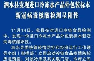 山东泗水县发现进口冷冻水产品外包装标本新冠病毒核酸检测呈阳性