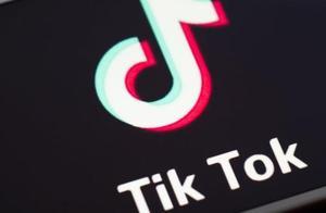 Tik Tok暂缓在美国下架 专家:巧取豪夺才是美国最终目的