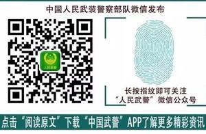 集结号丨《中华人民共和国退役军人保障法》明年起施行