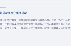 融创成立文化集团,孙宏斌29岁长子孙喆一担任总裁