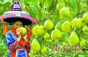 生态融湾强产业 旅游融湾促民富