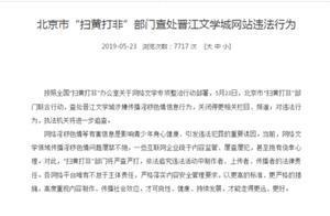 海外网评:违法网站被停更,但网络文学发展不停步