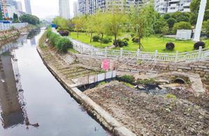 护城河水污染严重