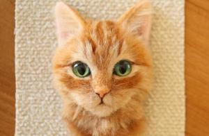 男子做出超逼真猫咪刺绣,百分百还原吓坏网友