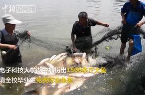 四川一高校捕捞上千斤大鱼 为毕业生制作全鱼宴