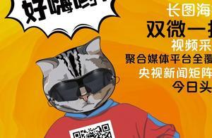 喵博士资讯 | 132家电信企业业务经营许可不合格;中国移动发布1.98万皮长公里光缆产品集采