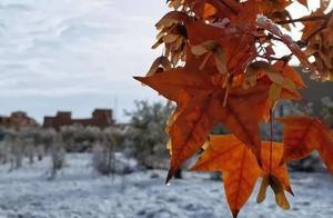 在兰大,我们可以靠着暖气来赏雪,羡慕不?