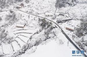 立冬的习俗风俗习惯有哪些 立冬为什么要补冬吃饺子寓意介绍