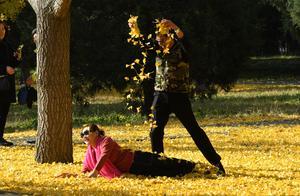 营造美景 京城部分公园缓扫落叶