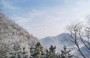 精致如油画!雪后,一派壮美北国风光