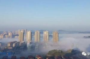 今日雾景 水墨丹青荣昌城