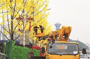 """银杏树装上假树叶""""人造美景""""引质疑"""