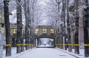 大学校园迎来2020年第一场雪哪抹景色最让你心动?