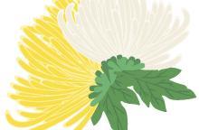 永远记住你   捧一束春天的花,献给逆行未归的英雄