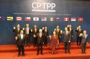 海外网评:特殊时期,中国释放加入CPTPP积极信号