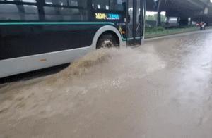 暴雨天送娃上学怎么整?宝山有个学校架起了超长雨棚……