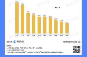 主流电商渠道代餐食品市场增长超35% 数据显示广东最爱轻食,重庆最喜代餐