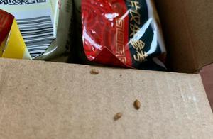 包装内发现类似虫卵的异物 广西螺霸王食品:正核实