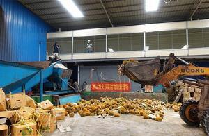 广西海关销毁近50吨涉嫌走私榴莲!吃货别伤心了,这类水果吃不得