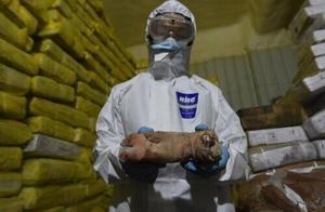 广东海警侦破一宗特大走私冻品案,涉案金额超20亿元
