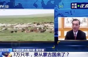 蒙古向中国捐赠3万只羊由湖北安排,先在二连浩特进行检疫和屠宰加工
