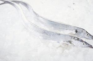 山西太原进口冷冻带鱼制品外包装检出阳性
