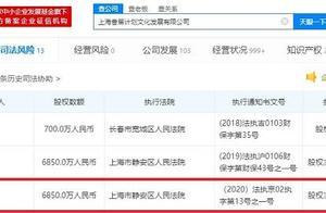 王思聪所持上海香蕉计划文化发展有限公司股权已解除冻结 数额为6850万人民币