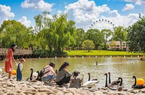 野生动物园添新景!假期游玩要注意这些噢