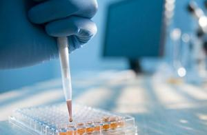 美国新冠肺炎确诊病例超883万例,死亡超22.7万例