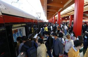 香山红叶观赏季首个高峰日,有轨电车西郊线客流增长迅速