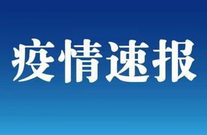 新疆卫健委:昨日无新增确诊病例,新增无症状感染者137例
