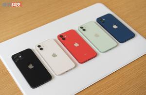 iPhone 12 系列上手图赏:颜色比想象中的要好看