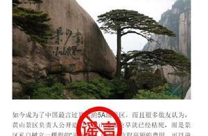黄山风景区辟谣迎客松为塑料树,网友评论亮了