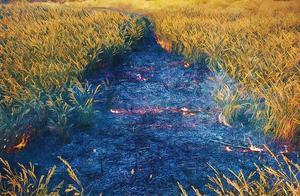 剧讯|《棋魂》同名真人版网剧定档10月27日 爱奇艺迷雾剧场将拍《平原上的摩西》电视剧版