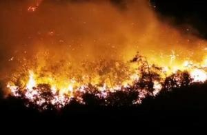 突发!广东汕头南澳发生森林山火,正全力扑救
