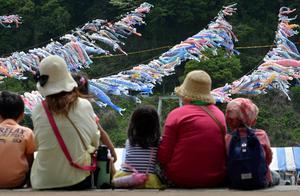 84.5万!日本今年新生人口预计再创新低