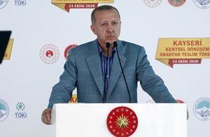 外媒:马克龙严打伊斯兰极端势力遭埃尔多安骂精神病 法国召回驻土耳其大使