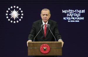 埃尔多安:土耳其民众永远不要购买法国货