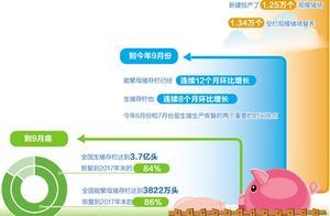 猪肉价格七连降!生猪产量持续恢复,产业转型压力犹存