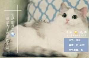 九江早安·2020年10月27日新闻早班车