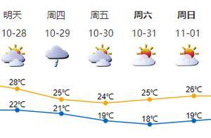 深新早点丨速来打卡!深圳湾公园流花山马鞭草花海来袭