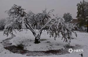甘肃广河现今年下半年首场降雪 积雪深达10厘米