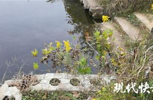 南京水库溺亡案推人者父母:女儿精神状态不好,近年无来往