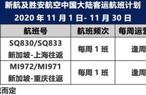 新加坡11月6日起允许来自中国大陆的访客入境