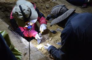 甘肃发现距今16万年以上、最早占据青藏高原的丹尼索瓦人