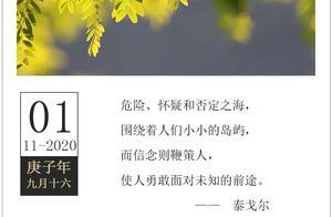 「2020.11.01」轻松早茶