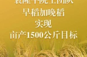 得知破纪录,袁老连飙英语!网友:超可爱