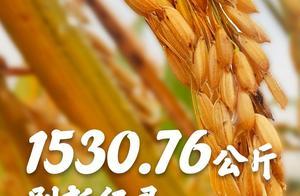亩产1530.76公斤!袁隆平的杂交稻再次刷新纪录